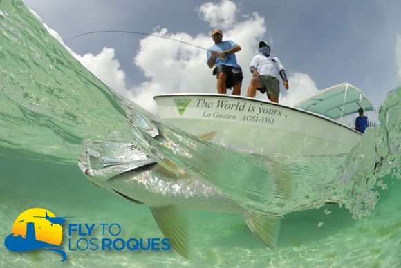 Fly fishing y pesca en Los Roques